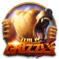 wild_grizzly